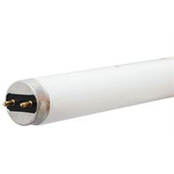 "T-8 32W 48"" FLUORESCENT TUBE WARM WHITE"